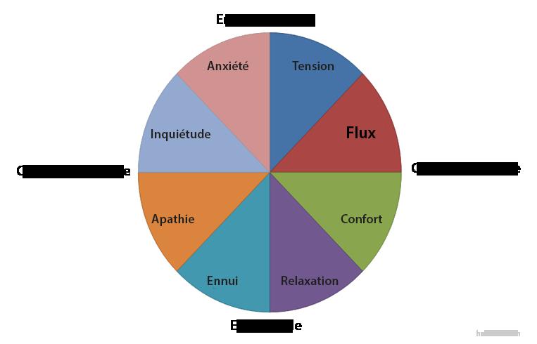 Enjeux & Compétences : Le Flow